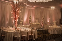 Large Wedding set up